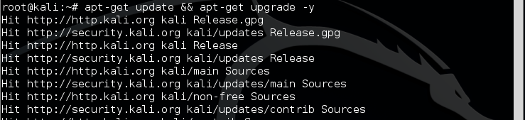 4.2 - kali quick update and upgrade