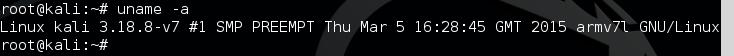 0 - Kali Pi Kernel