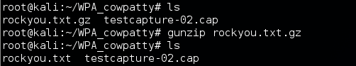 3 - gunzip password list