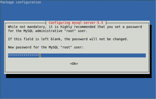 55 - MYSQL password