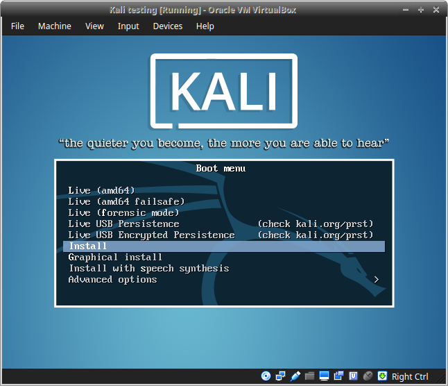 15_Kali_Sana_Select_Install_to_automatically_install